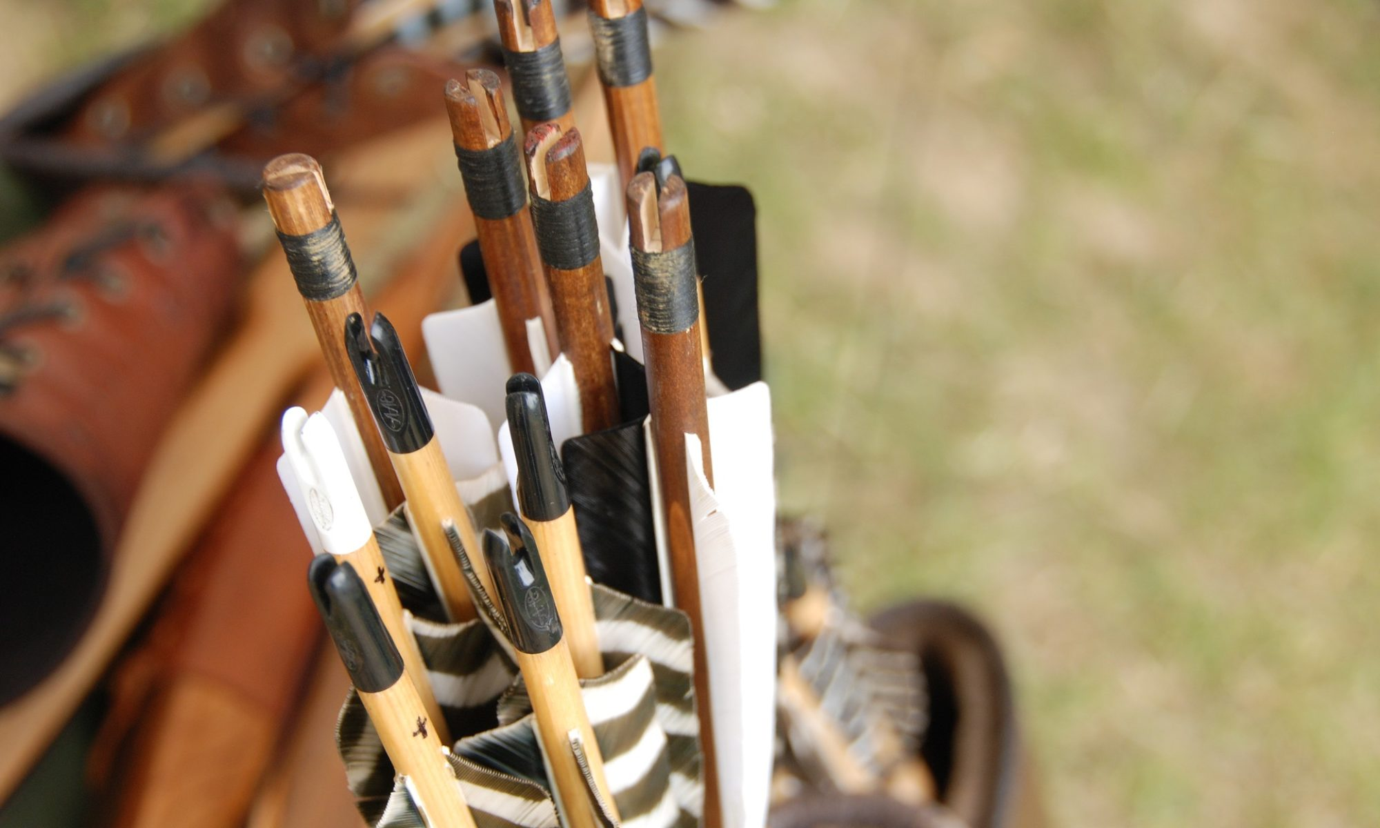 Adventures in Archery